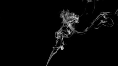 White smoke of cigarette in super slow motion — Stock Video