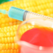 Sweet corn being placed under a syringe — Stock Video #21801643