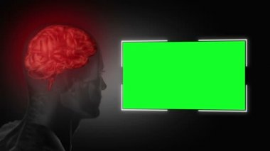 Human head next to a green screen — Stock Video