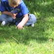 Boy looking at grass with a magnifying glass — Видео