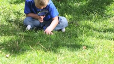 Boy looking at grass with a magnifying glass — Stock Video