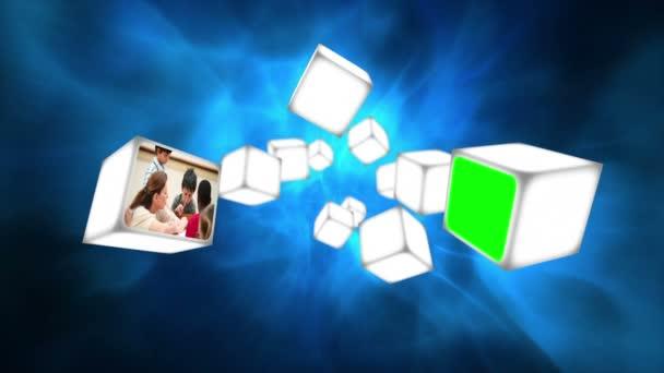 Vidéos de l'école sur les cubes — Vidéo