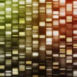 Yellow, red, orange DNA strands — Stock Photo