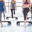 Aerobics class in session - Stock Photo