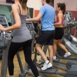 Three training on step machines — Stock Photo #23047238
