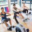 Stock Photo: Three on rowing machines