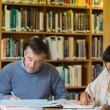 Studying in the library — Stock Photo #23049970