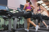 Two women exercising on treadmills — Stock Photo