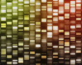 Yellow, red, orange DNA strands — Stock Photo