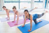 Mujeres en esteras en clase de yoga — Foto de Stock