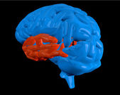 Blue brain with highlighted temporal lobe — Stock Photo