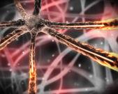 Turuncu mikroskobik sinir sistemi — Stok fotoğraf