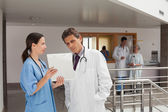 Two doctors standing in the hall — Stock Photo