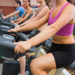 Stock Photo: Exercising on exercise bicycles