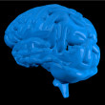 Blue brain — Stock Photo #23053138