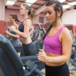 Stock Photo: Women exercising in gym
