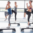 Four women raising their legs while doing aerobics — Stock Photo #23054662