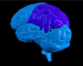 Blue brain with highlighted parietal lobe — Stock Photo