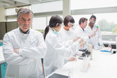 Chemist in busy lab — Stock Photo
