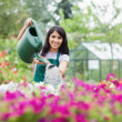 Happy employee watering plants — Stock Photo #23086416