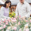 Couple choosing flowers — Stock Photo #23086532