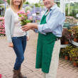 Stock Photo: Woman buying flowers