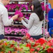 Couple picking flower from shelf — Stock Photo #23086818