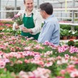 Worker showing customer a flower in greenhouse — Stock Photo