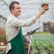 Gardener looking happily at seedling while taking notes - Stok fotoğraf