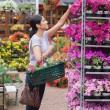 Stock Photo: Cheerful womtaking flower