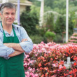Employee in the greenhouse — Stock Photo