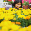 Woman smelling yellow flowers — Stock Photo