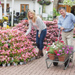 Smiling couple shopping for flowers — Stock Photo
