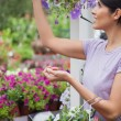 Woman collecting flowers in garden center - Photo