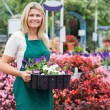 Woman holding a flower box — Stock Photo