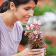 Woman holding a flower and smelling - Foto de Stock