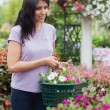 Stock Photo: Womputting flowers into basket