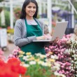 Brunette typing on the laptop in the garden centre — Stock Photo #23088862