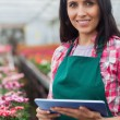 Woman doing inventory in greenhouse — Stock Photo #23088940