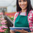 Woman doing inventory in greenhouse - Stock Photo