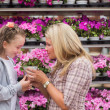 Stock Photo: Mother and daughter smelling plant