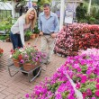 Smiling couple putting flowers in trolley — Stock Photo