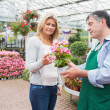 Woman talking to worker about plant — Stock Photo