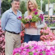 Cheerful couple choosing flowers — Stock Photo