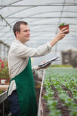 Gardener looking happily at seedling while taking notes — Stock Photo