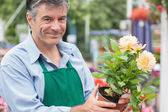 Male florist holding a flower — Photo