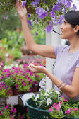 Woman collecting flowers in garden center — Stock Photo