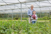 Gardener and grandchild holding a flower — Stock Photo