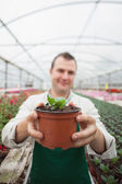 Employee holding up potted plant — Stock Photo