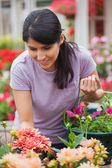 Woman shopping for plants — Stock Photo